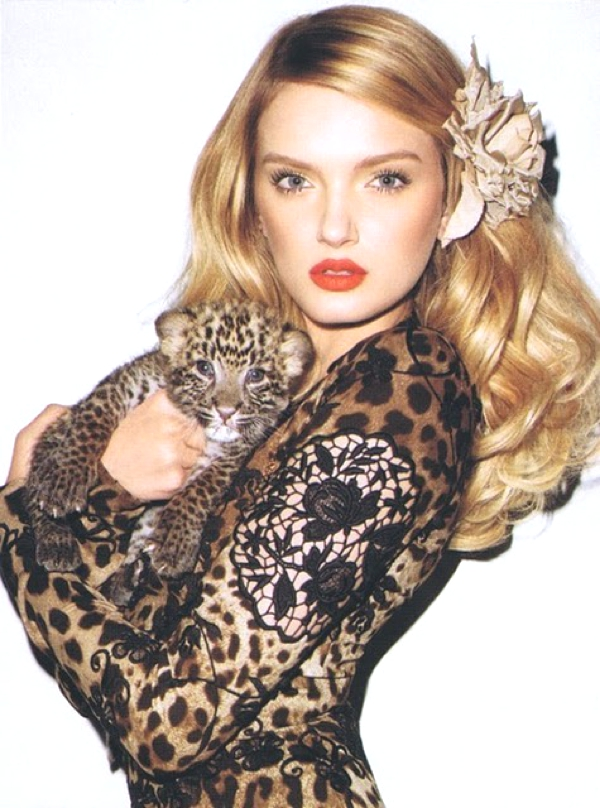 dolce_and_gabbana_leopard_print_tumblr
